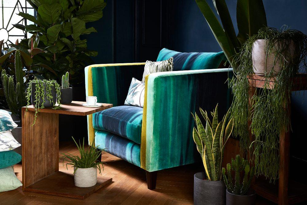 Distant shores indoor plants and teak side table